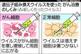 ウイルス、がん細胞を破壊…患者に治療効果